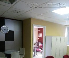 Sala Comercial para Alugar e a Venda São Paulo - SP