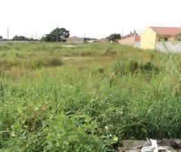 Terreno para alugar e comprar em Paranaguá