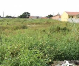 Terreno para Alugar Paranaguá - PR